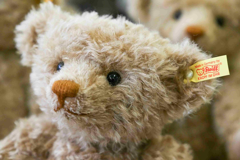 Steiff Bear Embroidered